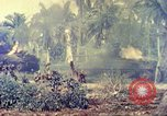 Image of United States Marine Corps Guam Mariana Islands, 1944, second 24 stock footage video 65675063821