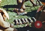 Image of United States soldiers Germany, 1945, second 11 stock footage video 65675063829