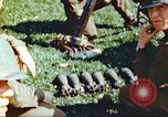 Image of United States soldiers Germany, 1945, second 13 stock footage video 65675063829