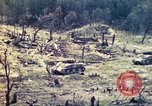 Image of U.S. Army 710th Tank Battalion Peleliu Palau Islands, 1944, second 48 stock footage video 65675063842