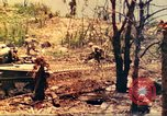 Image of 1st Tank Battalion Peleliu Palau Islands, 1944, second 2 stock footage video 65675063844