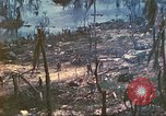 Image of 1st Tank Battalion Peleliu Palau Islands, 1944, second 28 stock footage video 65675063844