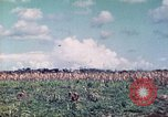 Image of 4th Tank Battalion Tinian Island Mariana Islands, 1944, second 8 stock footage video 65675063857