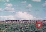 Image of 4th Tank Battalion Tinian Island Mariana Islands, 1944, second 9 stock footage video 65675063857