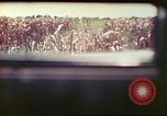 Image of 4th Tank Battalion Tinian Island Mariana Islands, 1944, second 19 stock footage video 65675063858