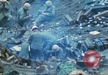 Image of 4th Marine Division Iwo Jima, 1945, second 15 stock footage video 65675063862