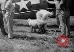 Image of aircraft rescue operation test United States USA, 1944, second 42 stock footage video 65675069988