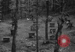 Image of sled dogs Wonalancet New Hampshire USA, 1939, second 5 stock footage video 65675070946