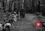 Image of sled dogs Wonalancet New Hampshire USA, 1939, second 16 stock footage video 65675070946