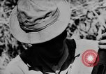 Image of American Army advisers assist South Vietnamese army Vietnam, 1962, second 8 stock footage video 65675071036