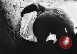 Image of German infantry Cassino Italy, 1944, second 33 stock footage video 65675071086