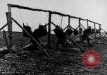Image of American Army soldiers training in combat during World War 1 France, 1917, second 23 stock footage video 65675071099