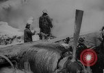 Image of damaged cargo plane New York United States USA, 1958, second 13 stock footage video 65675071115