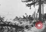 Image of US Soldiers examine damaged US M4 and German Panther tank Sterpigny Belgium, 1945, second 59 stock footage video 65675071156