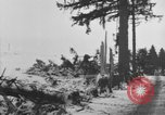 Image of US Soldiers examine damaged US M4 and German Panther tank Sterpigny Belgium, 1945, second 60 stock footage video 65675071156
