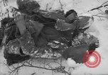 Image of Bodies of dead German soldiers in snow Ambleve Belgium, 1945, second 6 stock footage video 65675071159