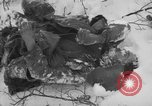 Image of Bodies of dead German soldiers in snow Ambleve Belgium, 1945, second 10 stock footage video 65675071159