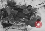 Image of Bodies of dead German soldiers in snow Ambleve Belgium, 1945, second 12 stock footage video 65675071159