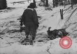 Image of Bodies of dead German soldiers in snow Ambleve Belgium, 1945, second 14 stock footage video 65675071159