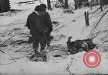 Image of Bodies of dead German soldiers in snow Ambleve Belgium, 1945, second 15 stock footage video 65675071159