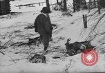 Image of Bodies of dead German soldiers in snow Ambleve Belgium, 1945, second 18 stock footage video 65675071159