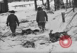 Image of Bodies of dead German soldiers in snow Ambleve Belgium, 1945, second 21 stock footage video 65675071159