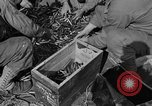 Image of aerial gunnery United States USA, 1944, second 21 stock footage video 65675071194