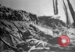 Image of German failure Europe, 1918, second 34 stock footage video 65675071206