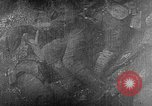 Image of British soldiers wearing gas masks Europe, 1916, second 42 stock footage video 65675071218