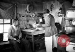 Image of African American farmers United States USA, 1931, second 5 stock footage video 65675071225