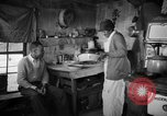 Image of African American farmers United States USA, 1931, second 22 stock footage video 65675071225