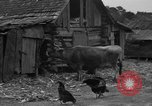 Image of African American farmers United States USA, 1931, second 4 stock footage video 65675071227
