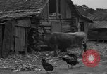 Image of African American farmers United States USA, 1931, second 6 stock footage video 65675071227