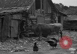 Image of African American farmers United States USA, 1931, second 9 stock footage video 65675071227