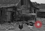 Image of African American farmers United States USA, 1931, second 11 stock footage video 65675071227