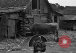 Image of African American farmers United States USA, 1931, second 32 stock footage video 65675071227