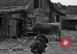 Image of African American farmers United States USA, 1931, second 33 stock footage video 65675071227