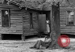 Image of African American farmers United States USA, 1931, second 51 stock footage video 65675071227