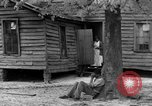 Image of African American farmers United States USA, 1931, second 53 stock footage video 65675071227