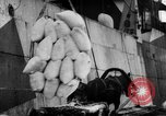 Image of food stuffs Russia, 1918, second 29 stock footage video 65675071229