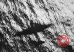 Image of Japanese planes South China Sea, 1941, second 18 stock footage video 65675071242