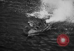 Image of Japanese planes South China Sea, 1941, second 45 stock footage video 65675071242