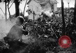Image of Allied troops Anzio Italy, 1944, second 14 stock footage video 65675071252