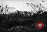 Image of Allied troops Anzio Italy, 1944, second 23 stock footage video 65675071252