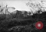 Image of Allied troops Anzio Italy, 1944, second 25 stock footage video 65675071252