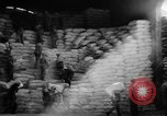 Image of bread supplied to Italian citizens in World War 2 Italy, 1944, second 6 stock footage video 65675071256
