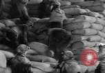 Image of bread supplied to Italian citizens in World War 2 Italy, 1944, second 10 stock footage video 65675071256