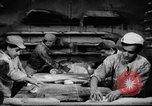 Image of bread supplied to Italian citizens in World War 2 Italy, 1944, second 16 stock footage video 65675071256