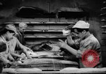 Image of bread supplied to Italian citizens in World War 2 Italy, 1944, second 18 stock footage video 65675071256