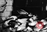 Image of bread supplied to Italian citizens in World War 2 Italy, 1944, second 23 stock footage video 65675071256